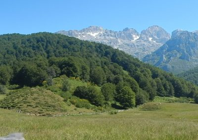 Picos de Europa G. Rivero