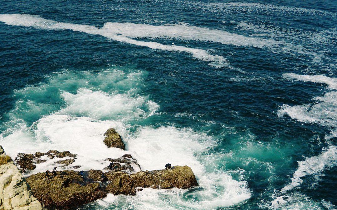 'Santander forthe Seas', programa para recuperar y conservar mares y océanos dotado por Fundación Santander con 450.000 €