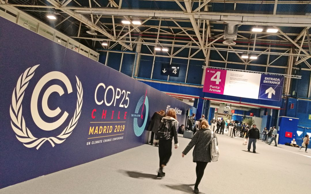 Una veintena de entidades financieras españolas sellan en la Cumbre una alianza contra el cambio climático